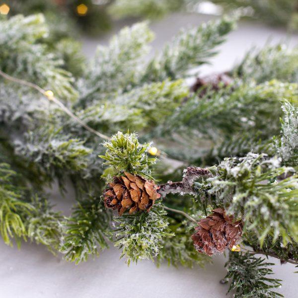 Branche de pin avec lumière del