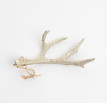 Bois de cerf champagne satine-Deer antlers in satiny champagne